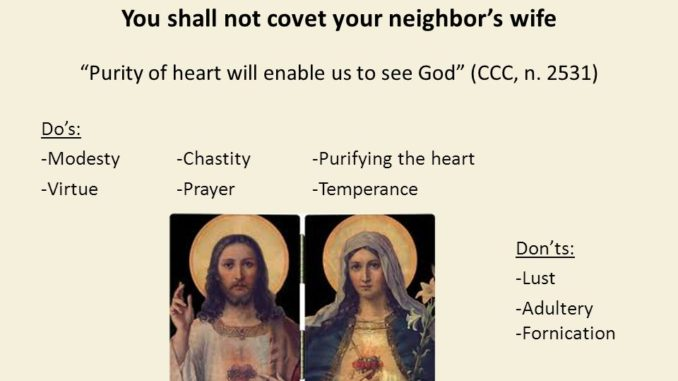 Catholic Catechism, Do Not Covet Your Neighbor's Wife | Reflections
